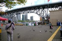 Pigeons right outside the Granville Island market.jpg