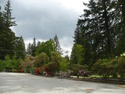 Trees and flowers at the Capilano park and Cleveland Dam area.jpg